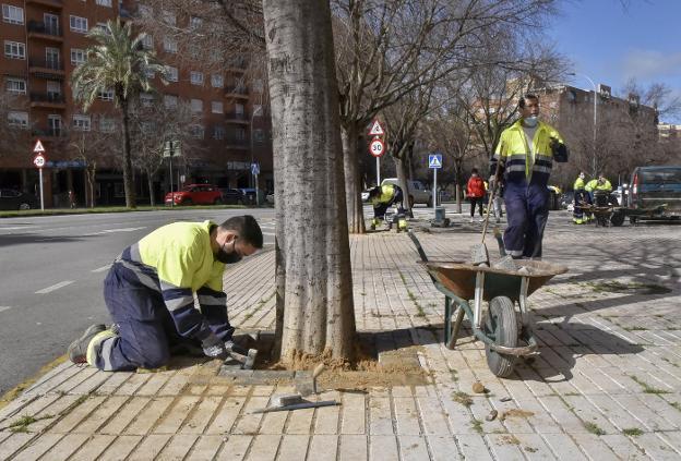 adoquines de Pretensados Durán para reparación en Badajoz